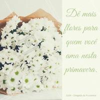 Primavera chegou e agora você não precisa de uma desculpa para distruibuir flores por aí! #primavera #iníciodaprimavera #flores #amo