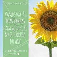 Seja bem vinda primavera 🌻  #primavera #iníciodaprimavera #flores #amo