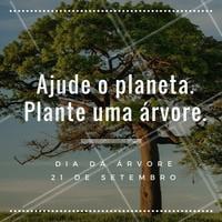 """Sabia que as florestas são apelidadas de """"pulmão do mundo""""? E não é a toa! As árvores ocupam cerca de 30% da superfície da Terra! Não podemos colocar esse presente da natureza em risco. Plante uma árvore! #diadaarvore #meioambiente #ahazou #natureza"""
