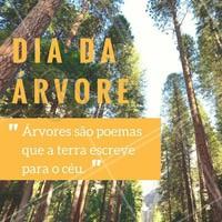 As árvores são grande presentes da natureza para nós! Por isso, é nosso dever cuidar e preservar.  #diadaarvore #ahazou #meioambiente #natureza