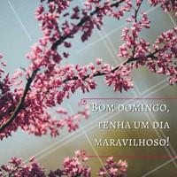 Ame sua beleza sempre. Feliz dia do idoso! #diadoidoso #amo #ahazou #idade #idoso #sabedoria