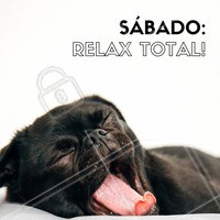 Sábado: Dia de deitar na cama e só levantar na Segunda-Feira! 😂  Um ótimo sábado pra vocês! #sabado #relax #ahazou #sabadorelax