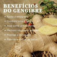 Sim, o gengibre tem muitos benefícios, dentre eles, auxilia na perda de peso. O gengibre atua acelerando o metabolismo e estimula a queima de gordura corporal. Os compostos 6-gingerol e 8-gingerol presentes nessa raiz, atuam aumentando a produção de calor e suor, o que também ajuda no emagrecimento e na prevenção do ganho de peso. #nutrição #alimentosaudável #ahazou #saude #beleza #bemestar #autoestima #gengibre #antioxidante #emagrecimento