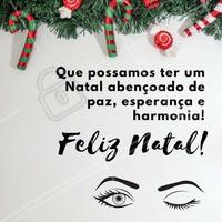 Feliz Natal pra todos os meus seguidores e sua família! 🎄💫 #natal #feliznatal #ahazou #boasfestas #sobrancelha #designdesobrancelha