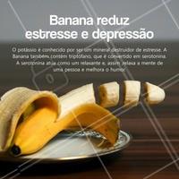 A banana é uma das frutas mais consumidas no Brasil e ela oferece muitos benefícios a quem consome. Além de ser um alimento com função obstipante e ser conhecida por ajudar nos sintomas de cãibras, a banana ainda reduz o estresse e diminui a depressão.  Então que tal incluir a banana nas suas refeições?  #banana a#alimentaçãosaudavel #ahazou #nutrição #alimento #saude #bemestar #autoestima
