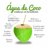 Veja quantos benefícios tem a água de coco!  #nutrição #aguadecoco #bemestar #ahazou #saude #coco #hidratação #diurético #nutricionista