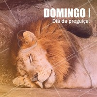 Domingou, hora de relaxar! #domingo #ahazou #semanal #domingou