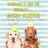 Uhuuu!! Bom fim de semana para nós 🙏 #cachorro #meme #ahazou #sextafeira #fimdesemana #finaldesemana #sabado