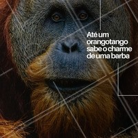 Quem curte uma barba aí? #barbearia #ahazou #engracado #meme #barba #orangotango