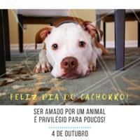 Comemore com o seu melhor amigo essa data tão especial. #diadocachorro #ahazou #comemorativo