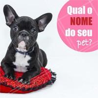 Comente aqui 👇 Queremos saber o nome do seu peludinho! #pet #ahazou #animais #cachorro #petshop #veterinario