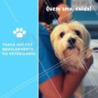 Uma visita periódica ao veterinário pode poupar seu pet e você de levar alguns sustos! Fazer uma avaliação geral da saúde do seu melhor amigo vai deixá-lo mais feliz e livre de doenças. 🐶 #cachorro #gato #ahazou #pet #veterinario #ahazoupet