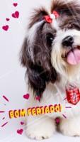 Bora curtir o feriadão! 😜 #feriado #ahazoupet #pet #animal #petshop #veterinario