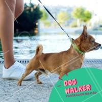 Precisa de passeador para o seu cachorro? Chama no What'sApp XXxxxxxx #dog #pet #ahazou #passeador #cachorro #dogwalker