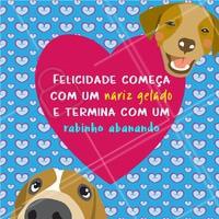 Amo! #cachorro #ahazoupet #pet #animal