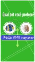 Conseguiu se decidir? Comenta!! #pet #peixe #hamster #ahazou #enquete #animal