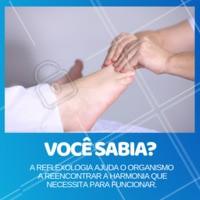 Engana-se quem pensa que a massagem nos pés é apenas relaxante. A reflexologia é útil para equilibrar várias funções do organismo! #reflexologia #ahazou #massagem #massoterapia