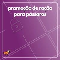 Aproveite o desconto na ração de pássaro! 🐦 #racao #ahazou #passaro #promocao #desconto