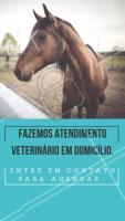 Atendemos animais de grandes portes. Ligue para nós em caso de emergência. #veterinario #ahazou #atendimento #cavalo