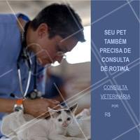 Seu pet também precisa de cuidados rotineiros. Aproveite nossa promoção e traga-o para uma consulta. #meupet #veterinario #ahazoupet #promocao