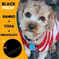 Aproveite a nossa promoção de black friday e traga seu pet para um dia de beleza <3 #banho #tosa #ahazoupet #meupet #petshop #vet