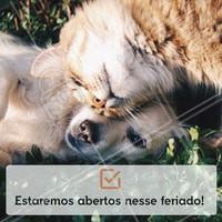 Traga seu pet nesse feriado que estaremos abertos das XXh às XXh. #pet #ahazoupet #feriado #horario #meupet