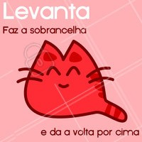 Bom dia! #ahazou #sobrancelha #levanta #bomdia