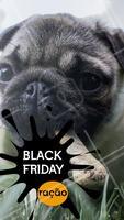 Temos desconto especial na Black Friday. Aproveite! #pet #ahazou #promocao #blackfriday #desconto #ahazoupet