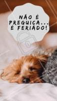 Bem-vindo feriadão! #feriado #ahazou #motivacional #engraçado