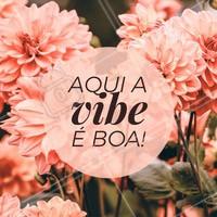 Só good vibes! 🌻 #motivacional #ahazou #inspiracao