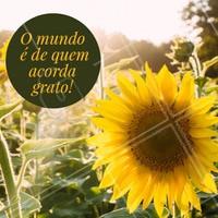 Quem concorda? 😜 Bom dia, seguidores! #bomdia #motivacional #ahazou #frasesinspiraçao