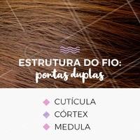 Essas três camadas são unidas e seladas por meio de proteínas e de gordura natural dos fios. As escamas das cutículas podem se abrir devido a danos externos, como: chapinha, secador, sol e procedimentos químicos! A reconstrução ajuda a fortalecer essas cutículas, mas quando o nível de pontas duplas é muito alto, a melhor opção é optar pelo corte. #pontasduplas #ahazou #cabelo #cuidadoscomocabelo #cabeleireiro
