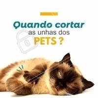 Fique atento aos sinais! 🐱 Gatos: você pode apertar, de leve, as almofadinhas das patinhas, para que as unhas fiquem expostas. Assim você vê se as unhas do seu pet já estão grandes demais! 🐶 Cachorros: quando as unhas começam a fazer barulho no piso, chegou a hora de cortá-las! Unhas grandes podem causar dor e desconforto ao animal. #pets #animais #ahazou #cachorro #gato #petshop #veterinario