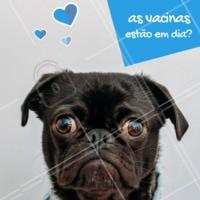 Já checou a carteira de vacinação do seu pet? Manter as vacinas em dia é um ato de cuidado e amor! Proteja seu bichinho. 🐶🐱 #pet #ahazoupet #vacina #veterinario #petshop