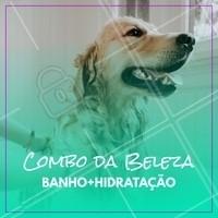Seu pet tá precisando de um banho? Aproveite nosso combo promocional de banho + hidratação! #pet #animal #ahazoupet #petshop #veterinario