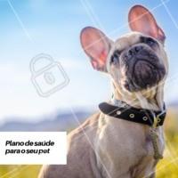 Temos planos de saúde para o seu pet, entre em contato conosco e saiba mais. #pet #planodesaude #ahazoupet #saude #cuidados