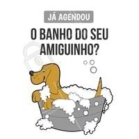 Ei, você! Lembrou de agendar o banho e tosa do seu amiguinho? 🐶 #cachorro #petshop #pet #ahazou #banhoetosa