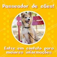 Seu dog precisa de exercícios e passeios. Ofereço esse serviço com todo o amor e cuidado para o seu peludo. Entre em contato para maiores informações! ☎ XXXXXXXXX #dogwalker #dogs #passeio #passeador #ahazouapp #ahazoupet #pets #exercicio