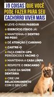 Sabemos que os cães tem uma certa expectativa de vida, mas existem atitudes que podemos tomar para prolongá-la e ajudá-los a viver mais, e claro, de forma saudável. Que tal começar hoje? #dog #pets #amorpordog #ahazouapp #ahazoupet #cuidados #dicas