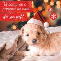 Está chegando o natal e o seu melhor amigo não pode ficar de fora! Aqui temos as melhores opções de presente para o seu pet, ele vai adorar! #petshop #ahazoupet #natal #pets