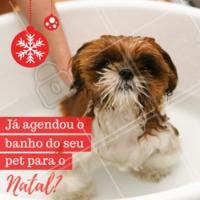 Não perca tempo e agende agora mesmo o banho do seu pet! #petshop #ahazoupet #natal #banho #pets