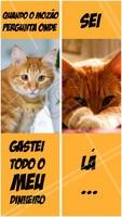 Gastar com cílios? Magina... 😂 Hahahaha  #cilios #fioafio #ahazouapp #mozao #engracado