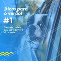 ATENÇÃO! ☝🏼 Caso você tenha a necessidade de sair do carro por um momento, jamais deixe seu cão trancado dentro do veículo. No verão as temperaturas aumentam tanto que em poucos minutos o seu animal pode sofrer uma insolação, nos casos das raças como o bulldog e pug, que têm dificuldades respiratórias, poucos minutos nestas condições podem conduzi-los à morte. #pet #verao #dicas #ahazoupet #veterinario