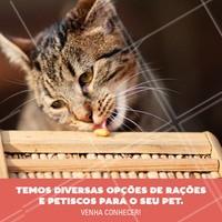 Sabe aquela variedade de comidinhas que você sempre sonhou para o seu pet? Nós temos! #pet #ahazoupet #pestiscos