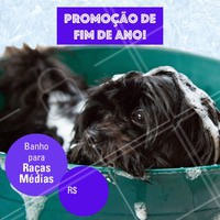 Não perca essa promoção e traga seu peludo para um banho! #banho #pet #dog #ahazoupet #promocao #fimdeano