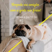Não sabe com quem deixar seu pet nas férias? Nós cuidamos dele, com MUITO amor! 🐶🐱❤️️ Entre em contato para maiores informações XXXXXX #pet #hotel #hospedagempet #ahazoupet #ferias