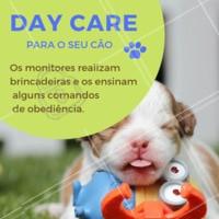 Seu cachorro fica muito tempo sozinho? Você não tempo para brincar ou sair para passear com ele? Nós temos a solução. Traga-o para o nosso daycare e deixe seu amigão MUITO feliz! #pet #creche #daycare #ahazoupet #dog #hotelpet