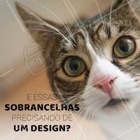 To de olho, hein! 😱😱 #designdesobrancelha #ahazou #sobrancelha
