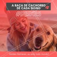 Eu amo todo mundo, e todo mundo me ama! Será que to iludido? Hahaha quem concorda? 😂❤️️♓ #signos #pet #ahazoupet #dogs