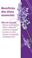 Saiba quais são os benefícios do óleo essencial de Lavanda! #terapiaalternativa #massagem #ahazou #tratamento